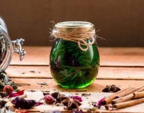 Шишки сосны: польза и вред, лечебные рецепты с фото