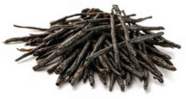 Чай Кудин: полезные свойства и противопоказания