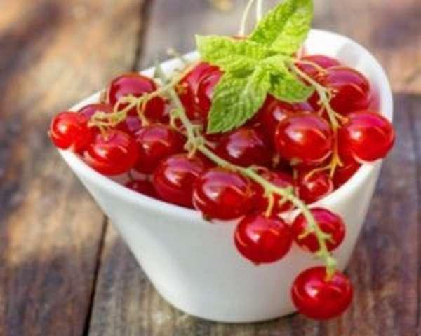 Красная смородина: полезные свойства и противопоказания