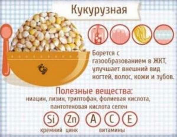 Кукурузная крупа: польза и вред, что приготовить