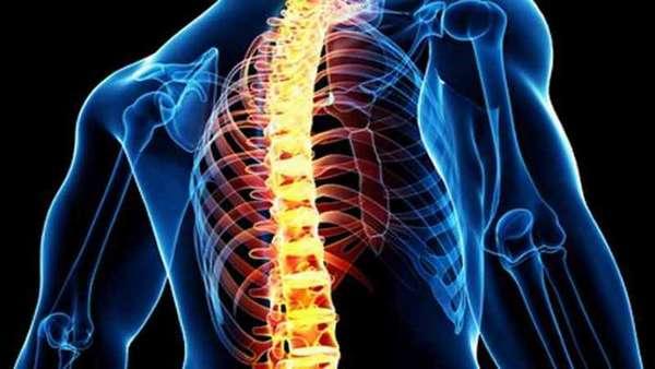 Жировая дегенерация костного мозга что это. Дистрофические изменения костного мозга позвонков Жировая конверсия костного мозга что