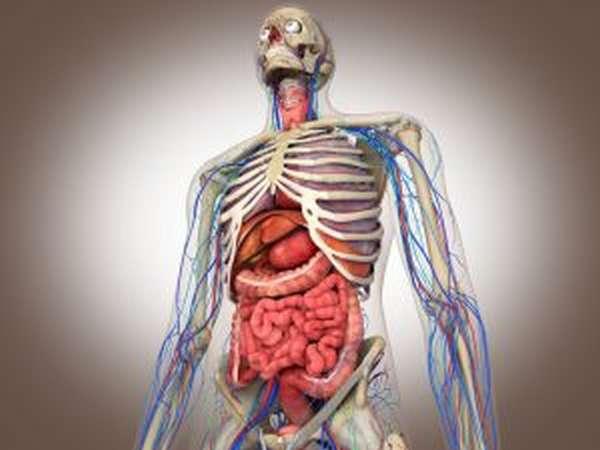 Причины и лечение язвенно-некротического васкулита