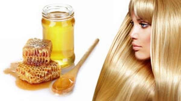 Липовый мед: польза и вред, лечебные свойства