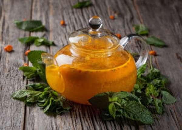 Чай с облепихой: польза и вред, как приготовить, рецепты
