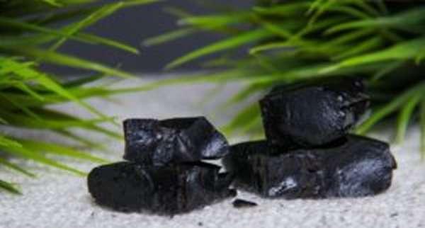 Мумие: полезные и лечебные свойства, противопоказания, как принимать, инструкция