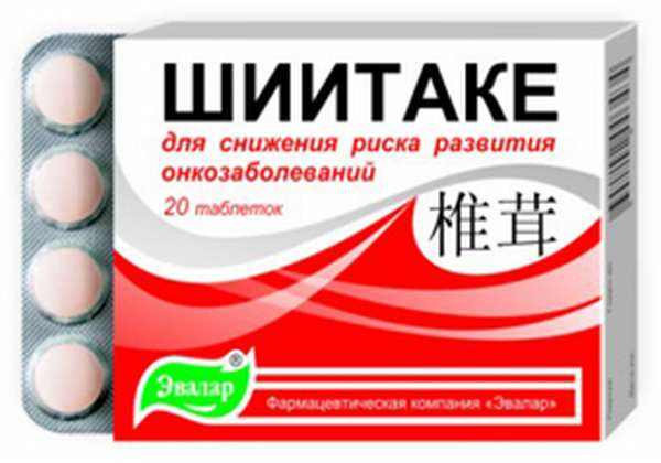 Грибы шиитаке: польза и вред, применение