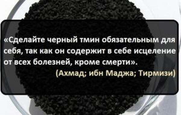 Черный тмин: полезные свойства и противопоказания, применение