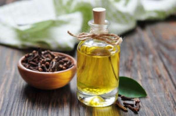 Эфирное масло гвоздики: свойства и применение