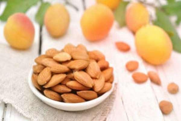 Польза и вред ядер абрикосовых косточек