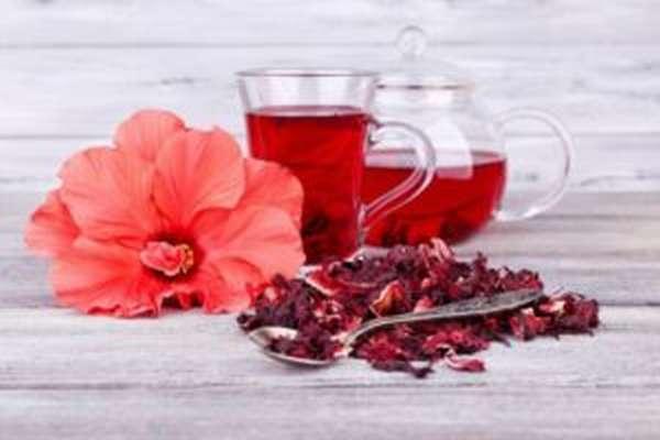 Чай каркаде: полезные свойства и противопоказания, как заваривать, отзывы