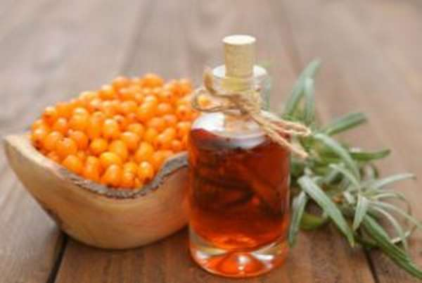 Польза и вред облепихи для организма человека, состав, витамины