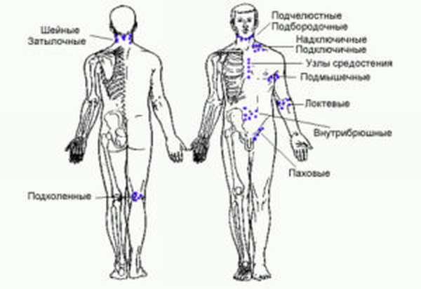 Лимфодренажный массаж: польза и противопоказания, как делать в домашних условиях