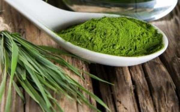 Спирулина: полезные свойства и противопоказания, как принимать для похудения