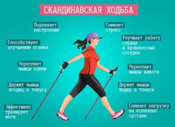 Чем полезна скандинавская ходьба с палками, как правильно ходить, как выбрать палки