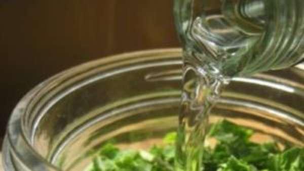 Польза и вред листьев винограда, рецепты