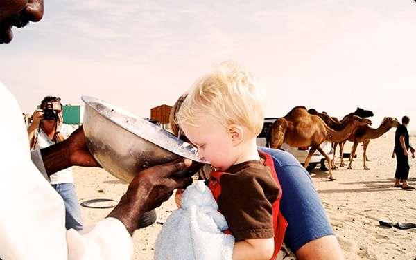 Чем полезно верблюжье молоко