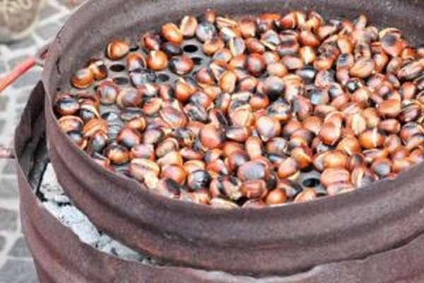 Полезные свойства каштана съедобного, как готовить, калорийность