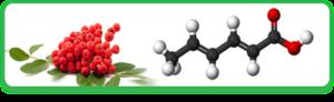 Вредна ли сорбиновая кислота (консервант Е200)
