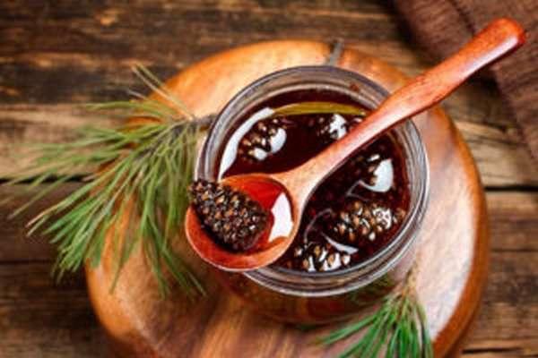 Варенье из шишек сосны: польза и вред, рецепты с фото, отзывы