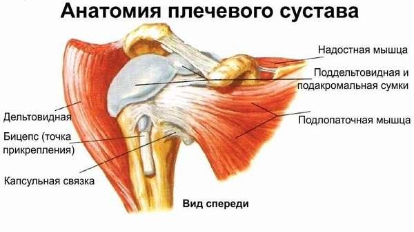 Упражнения при повреждении сухожилий плечевого сустава thumbnail