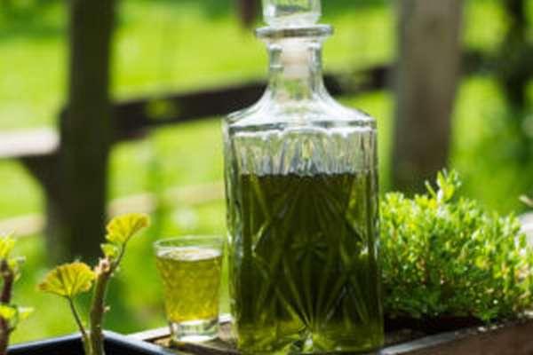 Крапива: полезные свойства, применение, рецепты