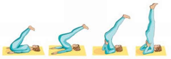 Чем полезно упражнение березка и как правильно его делать