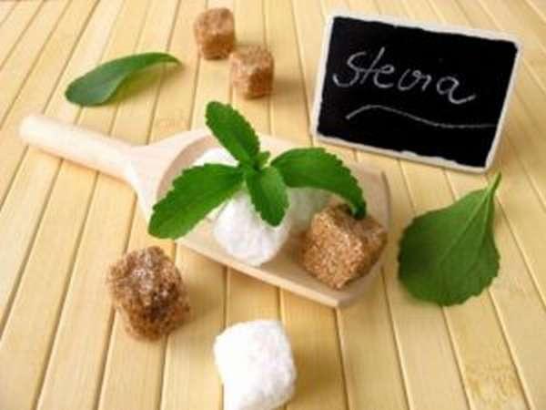 Сироп агавы: польза и вред, чем заменить