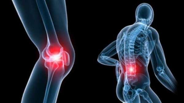 КСС. Коленный сустав. Эффективность рентгенологических и ультразвуковых методов диагностики дегенеративных заболеваний суставов (на примере коленного сустава).